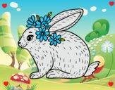 Conejo primaveral