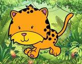 Cría de guepardo corriendo