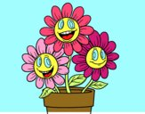 Maceta de flores