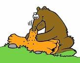 Oso hormiguero comiendo