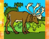 Dibujo Alce pintado por meibol
