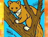 Dibujo Marta europea en el árbol pintado por meibol