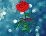 Dibujo Una rosa pintado por CLAUEMI