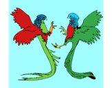 Aves con largas colas
