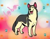 Dibujo Perro lobo pintado por kiu89