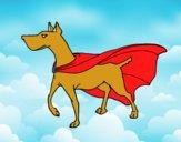 Perro superhéroe