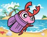 Escarabajo pelotero