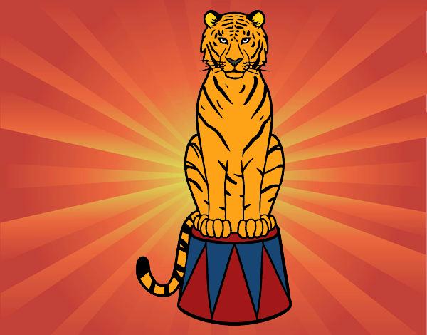 Dibujo Tigre de circo pintado por Clouster