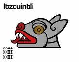Los días aztecas: el perro Itzcuintli