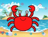 Un cangrejo de mar