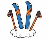 Esquís y palos