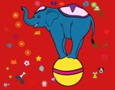Dibujo Elefante equilibrista pintado por abicabrera