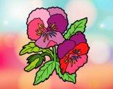 Dibujo Flores de pensamiento pintado por cuquina