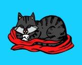 Dibujo Gato en su cama pintado por Joer
