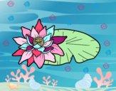 Dibujo Una flor de loto pintado por DuoKeksYT
