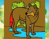Dibujo Lobo pintado por MARIELYSSS