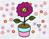 Dibujo Una flor de primavera pintado por Zurami