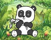 Un oso panda