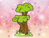 Árbol japonés