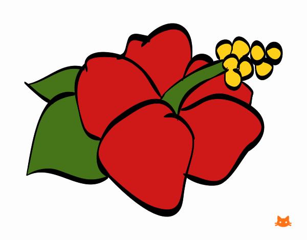 Dibujo Flor de lagunaria pintado por Juice