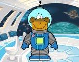 Mono espacial