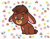 Dibujo Un conejo de campo pintado por julif317