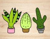 Dibujo Mini cactus pintado por betlid