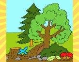Dibujo Bosque 1 pintado por bandin