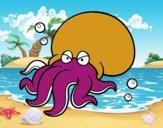 Octopoda