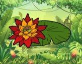 Dibujo Una flor de loto pintado por joselin10
