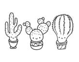 Dibujo de 3 mini cactus para colorear