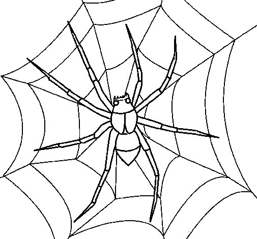 Dibujo de Araña para Colorear