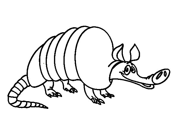 Dibujo de Armadillo adulto para Colorear
