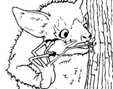 Dibujo de Aye-aye buscando insectos para colorear