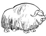 Dibujo de Bisonte 1 para colorear