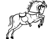 Dibujo de Caballo con silla saltando para colorear