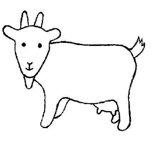 Dibujo de Cabra 2 para Colorear