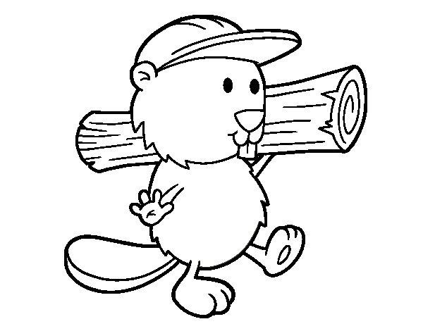 Dibujo de Castor con gorra para Colorear - Dibujos.net