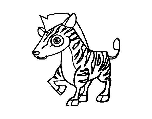 Dibujo de Cebra de montaña para Colorear