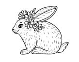 Dibujo de Conejo primaveral