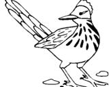 Dibujo de Correcaminos para colorear