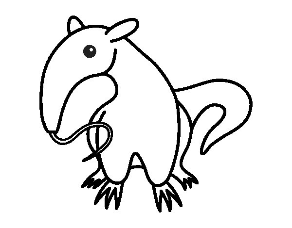 Dibujo de Cría de oso hormiguero para Colorear
