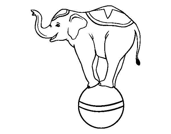Dibujo de Elefante equilibrista para Colorear - Dibujos.net