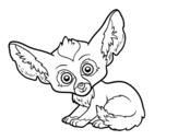 Dibujo de Fénec para colorear