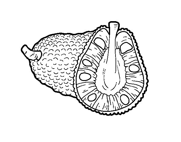 Dibujo de Fruta exótica la yaca para Colorear