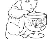 Dibujo de Gato mirando al pez