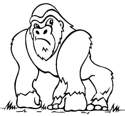 Dibujo de Gorila 1 para Colorear