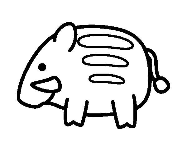 Dibujo de Jabalí bebé para Colorear