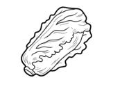 Dibujo de Lechuga romana para colorear