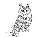 Dibujo de Lechuza de invierno para colorear